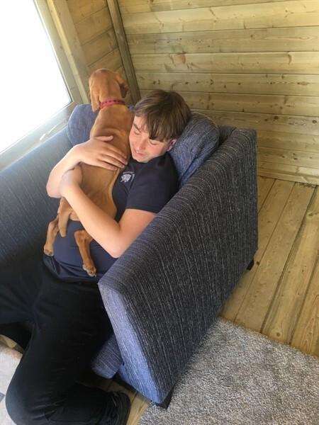 Dexter and Biscuit